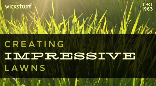 Wicks Turf | Des Moines Lawn Care, Fertilization, Tree Care, Snow ...